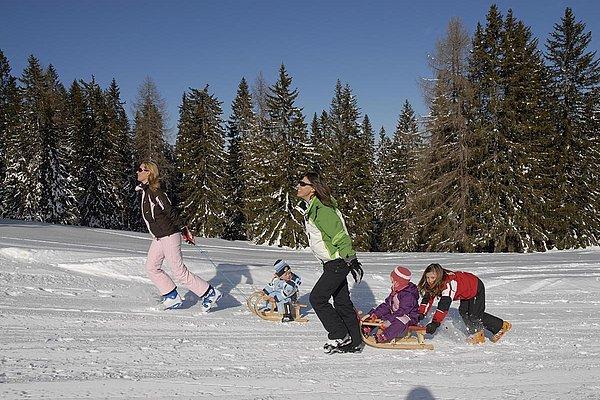 pardeller-winter14.JPG